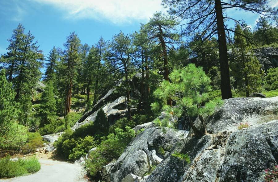 kaiser pass in Sierra Nevadas
