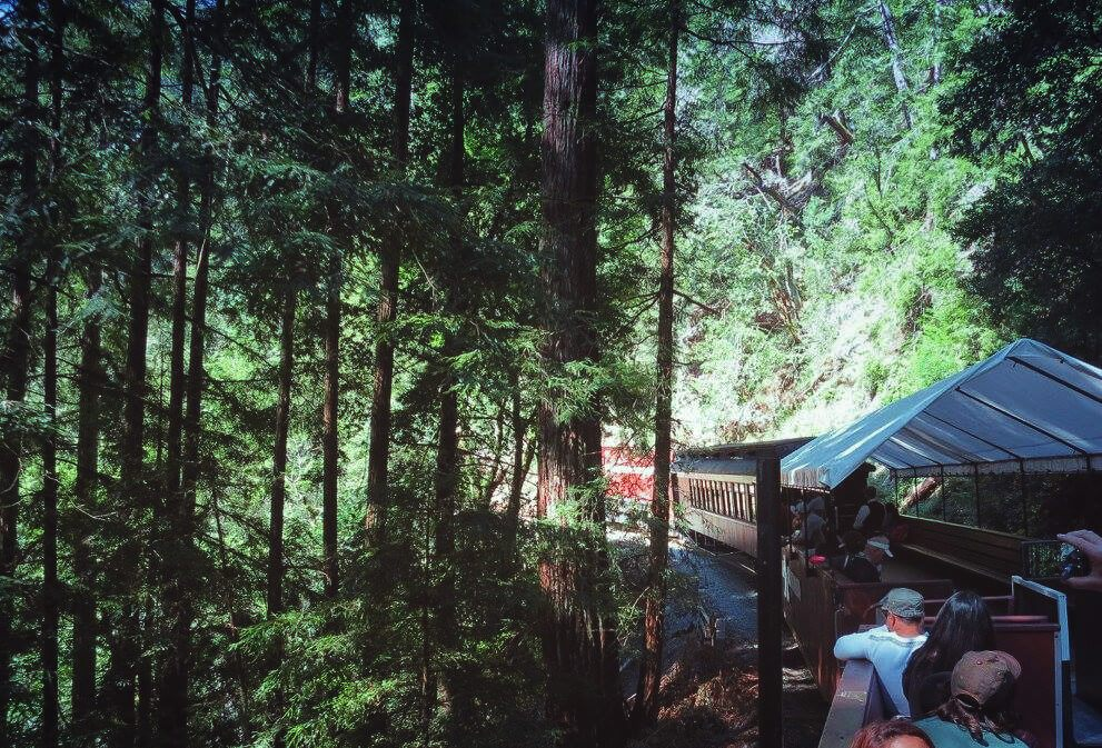The Roaring Camp Railroad in Santa Cruz, California takes you on an open-air train ride through the lush redwoods and straight to the beach and the Santa Cruz Boardwalk!
