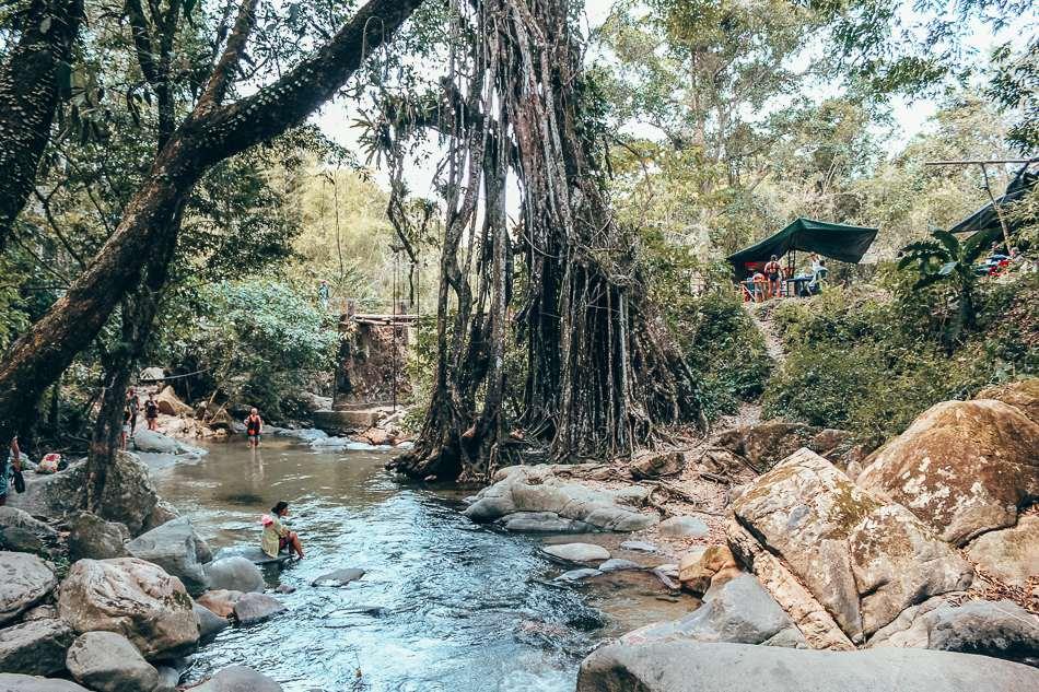 Exploring the jungle in Minca, Colombia