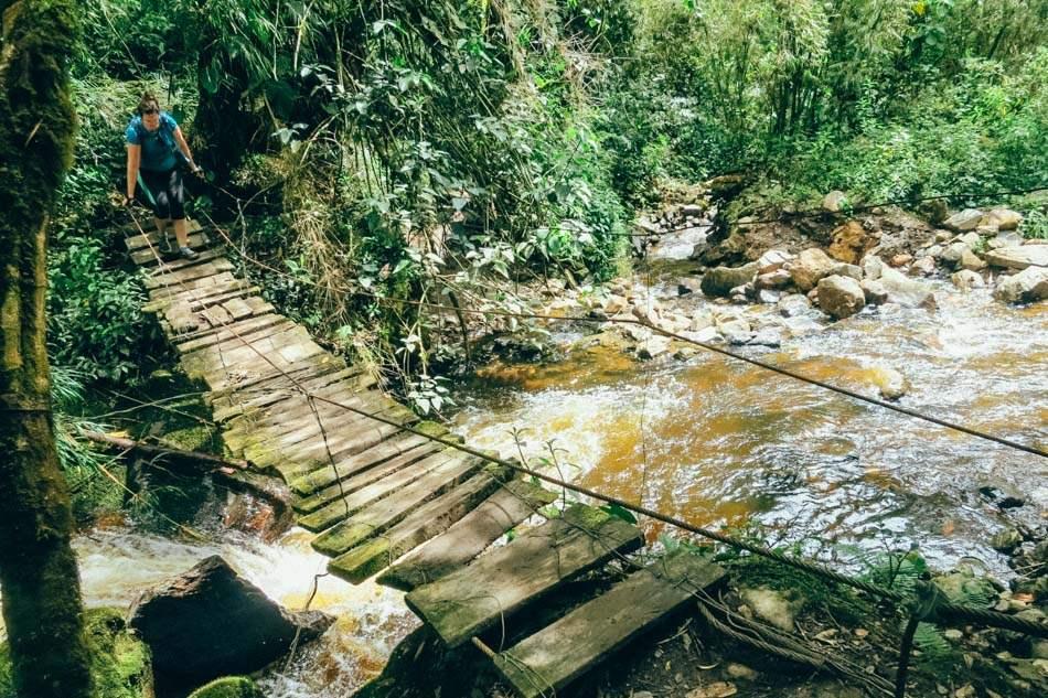 Bridge at Cocora Valley