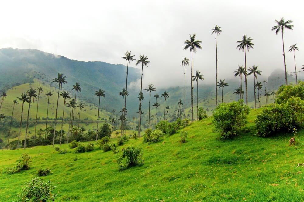 Travel Tips Us Virgin Islands