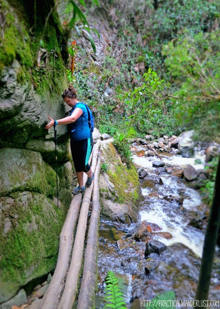 Rickety river crossing on the Valle de Cocora hike in Salento, Colombia.