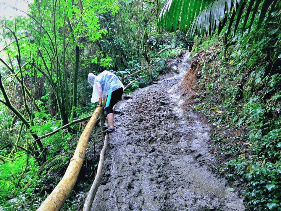Mud and rain in Valle de Cocora, Salento Colombia