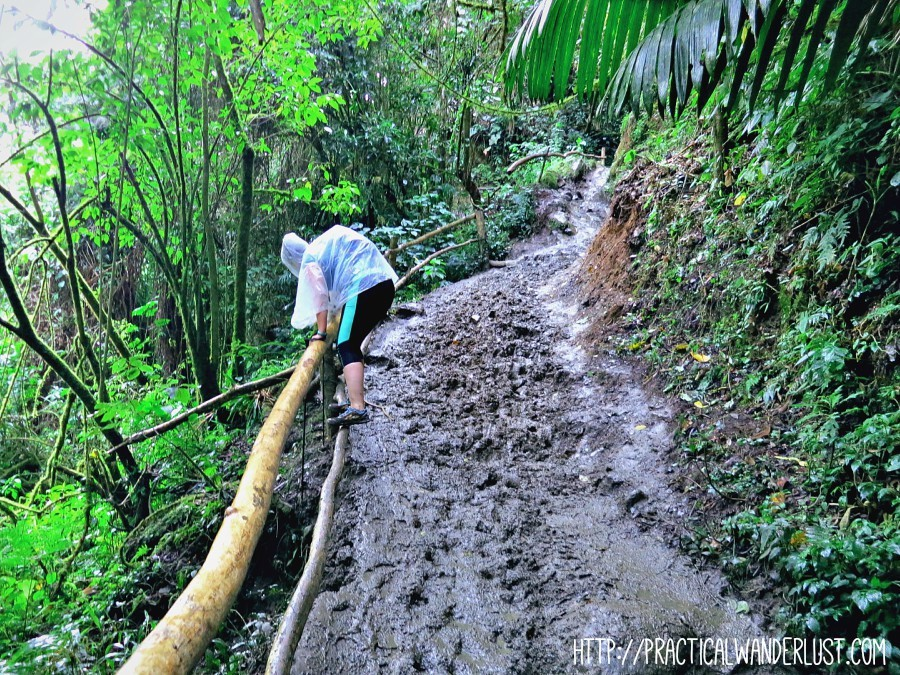 Battling the deep mud in the cloud forest on the Valle de Cocora hike in Salento, Colombia.