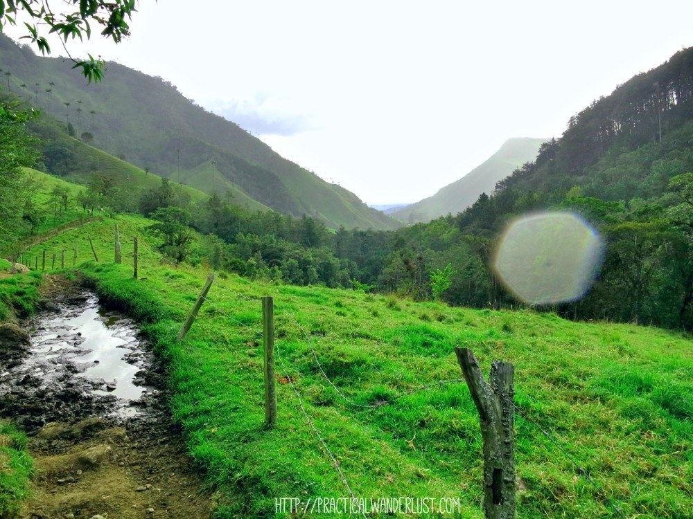 Rain and mud on the Valle de Cocora hike in Salento, Colombia
