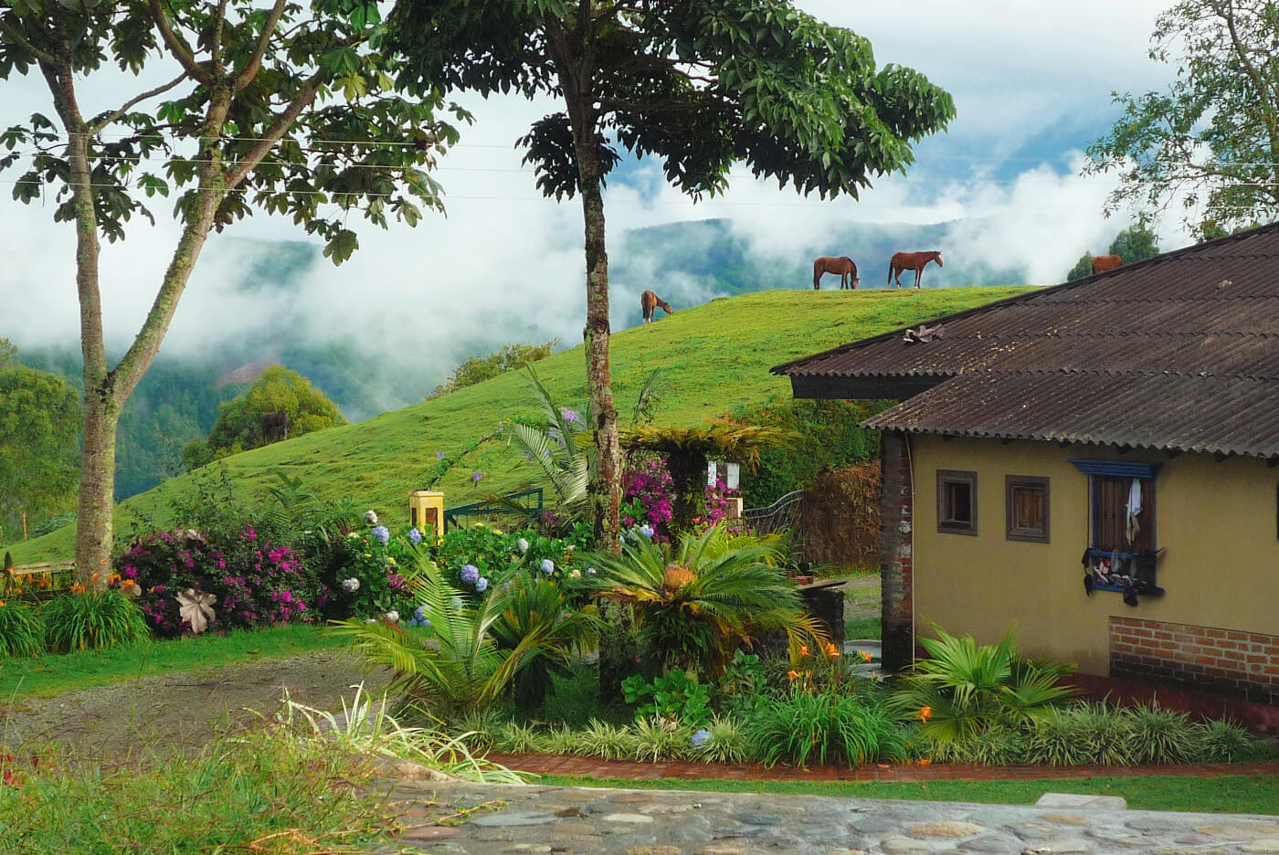 La Serrana Hostel in Salento, Colombia is one of the best hostels in Colombia!
