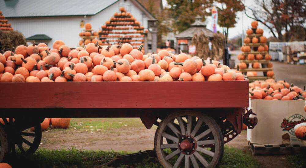 A local's guide to why you need to spend Halloween in Louisville, Kentucky this year!