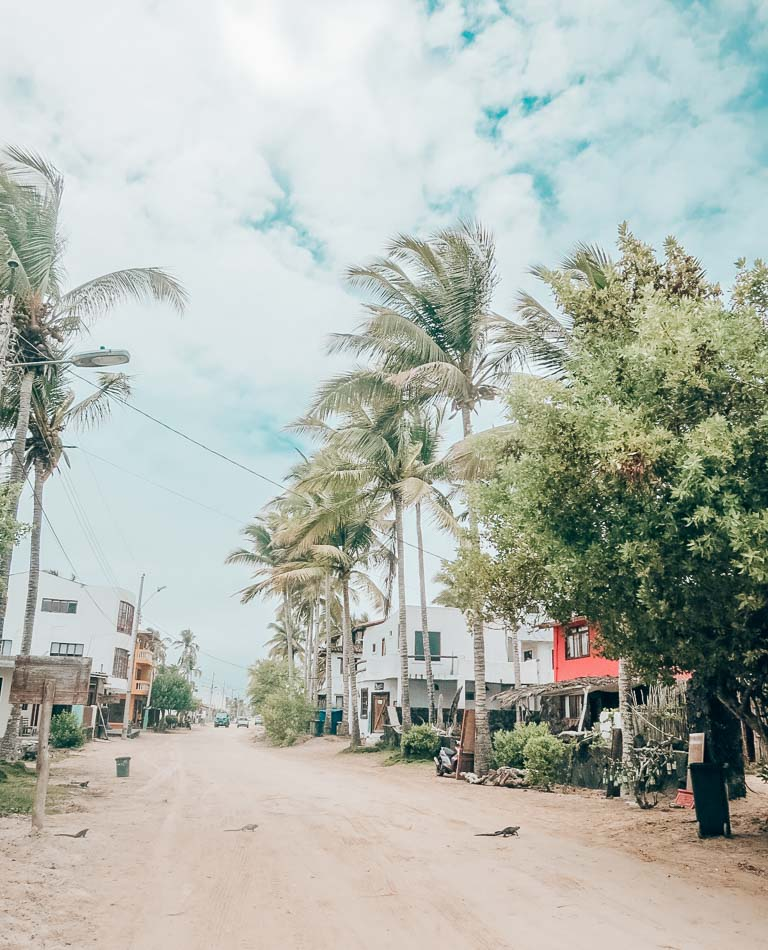 """""""Downtown"""" Puerto Villamil on Isabela Island in the Galapagos, with its sand streets and lazily swaying palm trees."""