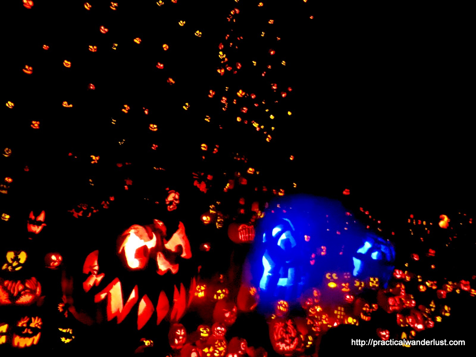 The stunning Jack O'Lantern Spectacular is one of Louisville's best Halloween attractions!