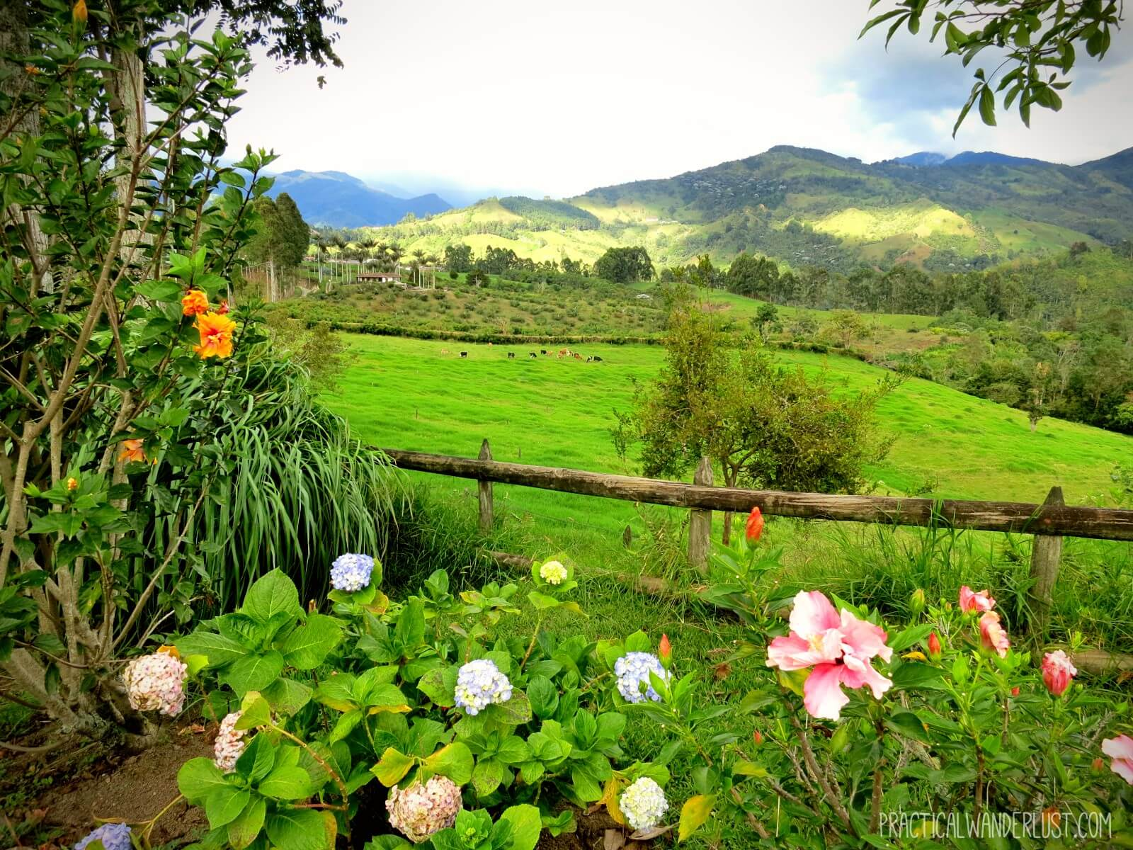 The incredible view of the Eje Cafetero from La Serrana Hostel in Salento, Colombia
