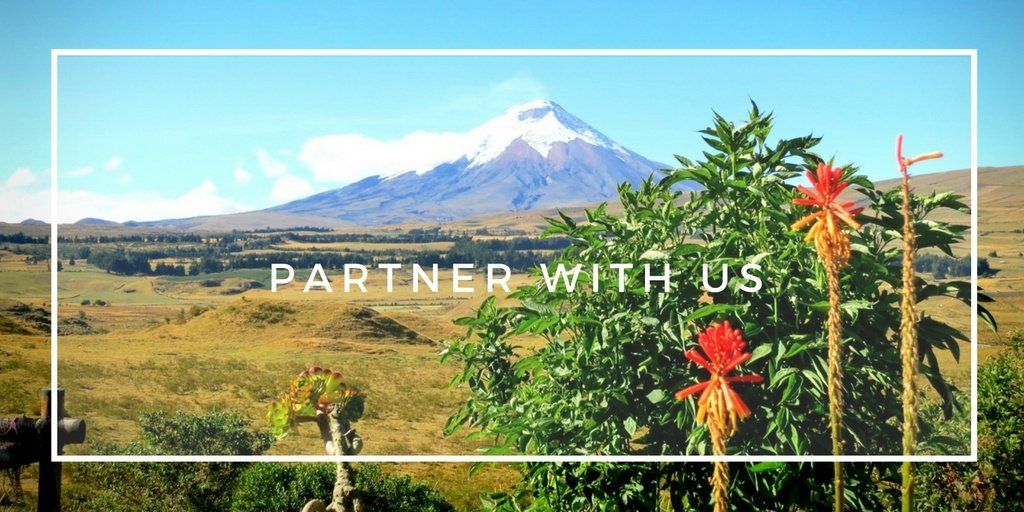 Partner with Practical Wanderlust!
