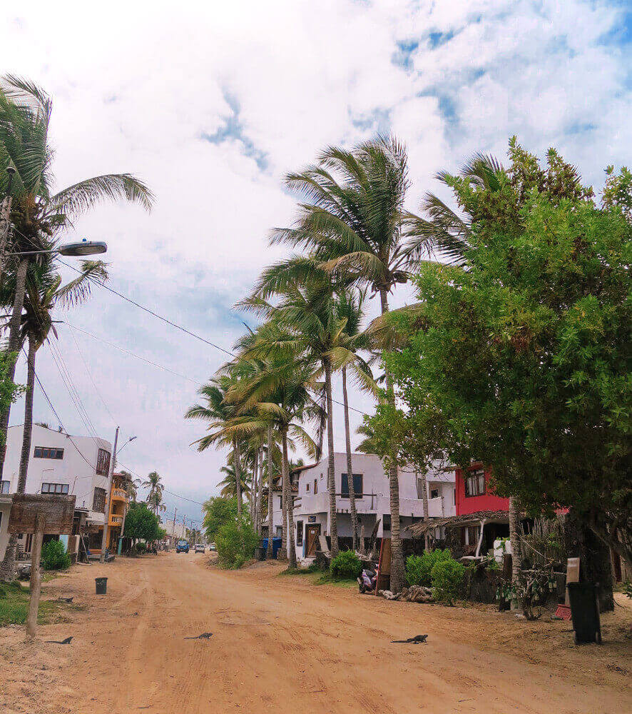 """Downtown"" Puerto Villamil on Isabela Island in the Galapagos, with its sand streets and lazily swaying palm trees."