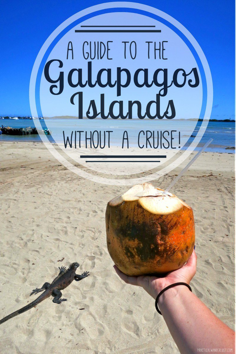 You don't need a cruise to see the Galapagos Islands in Ecuador. Save a ton of money with this budget-friendly alternative to Galapagos Islands travel! Backpack the Galapagos Islands and save a ton of money.