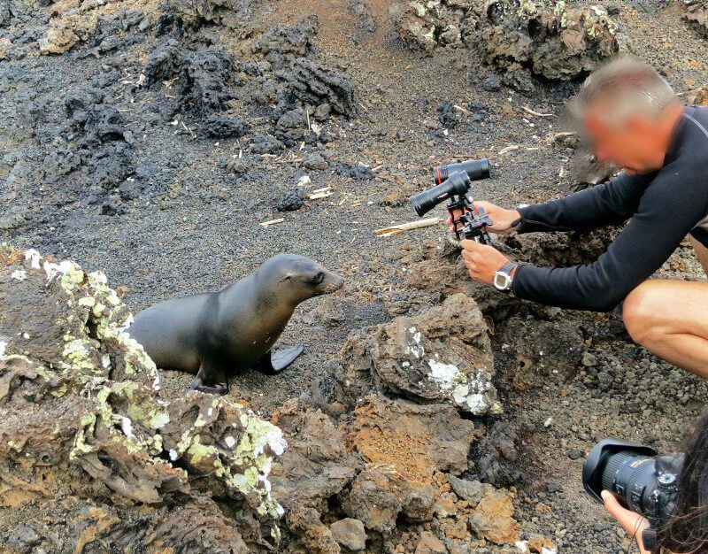 What NOT to do in the Galapagos. Respect the animals!