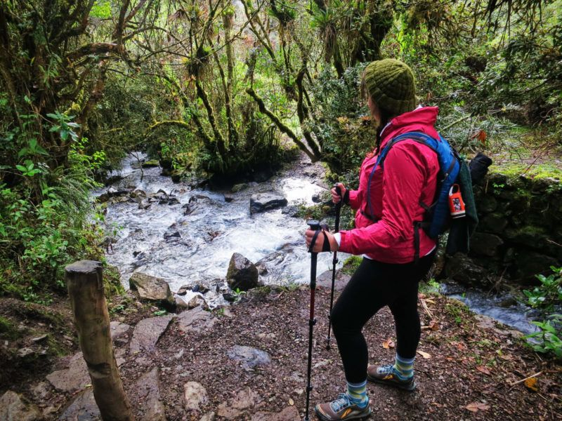 Attempting to hike the Inca Trail to Machu Picchu, Peru. And failing.