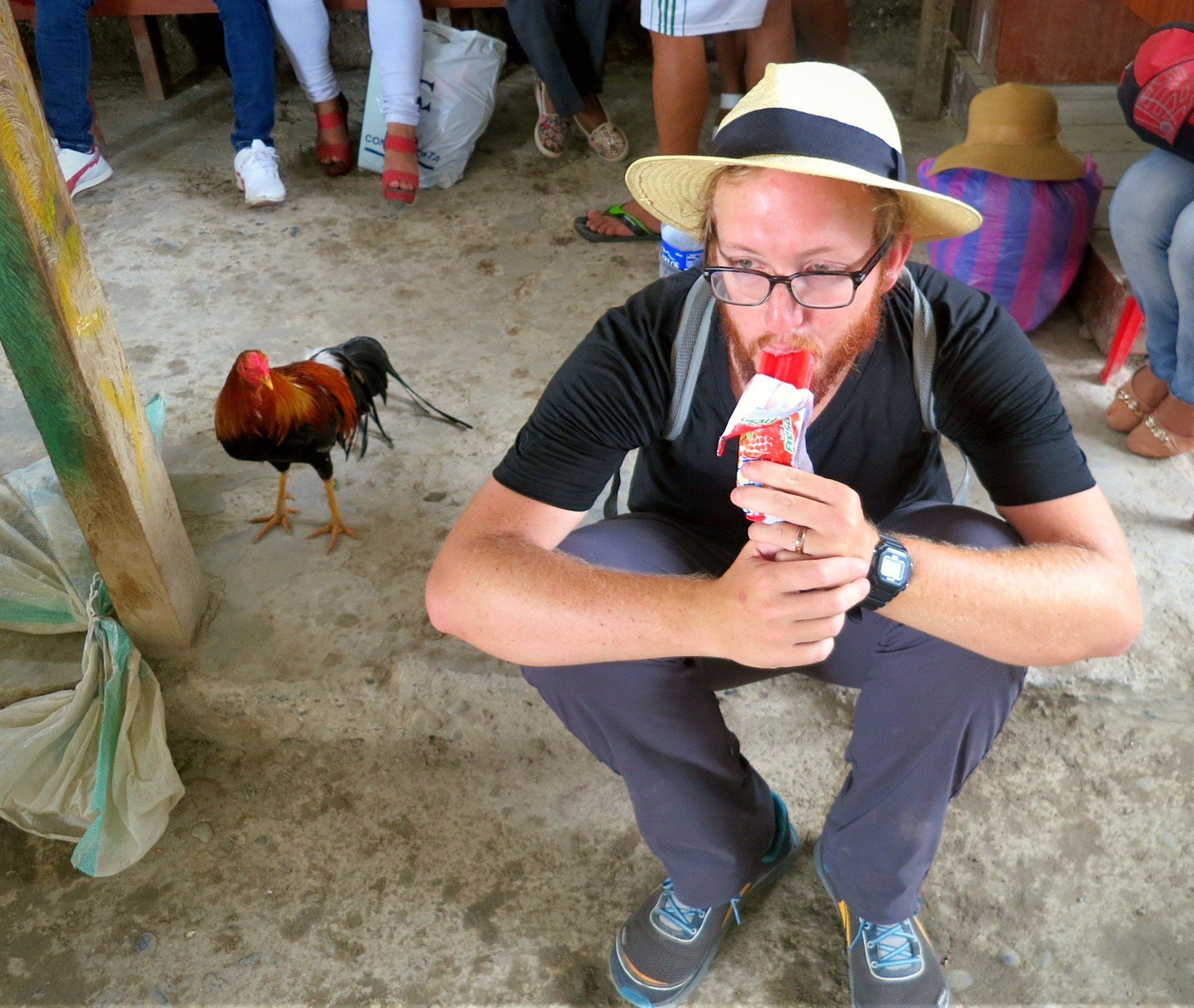 Our rooster friend and fellow passenger on the La Balsa Border Crossing from Ecuador to Peru.