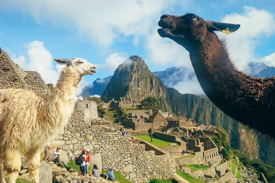 The best part of doing the Inca Trail to Machu Picchu
