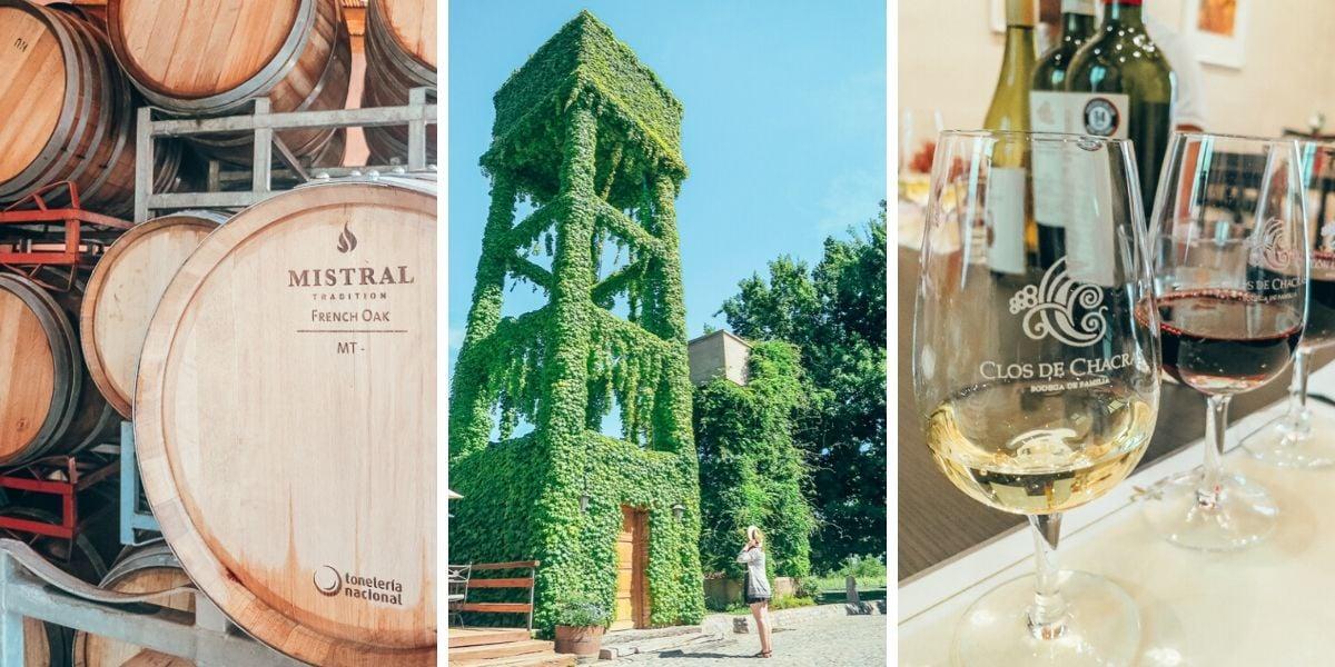 Best Wine Tour in Mendoza, Argentina