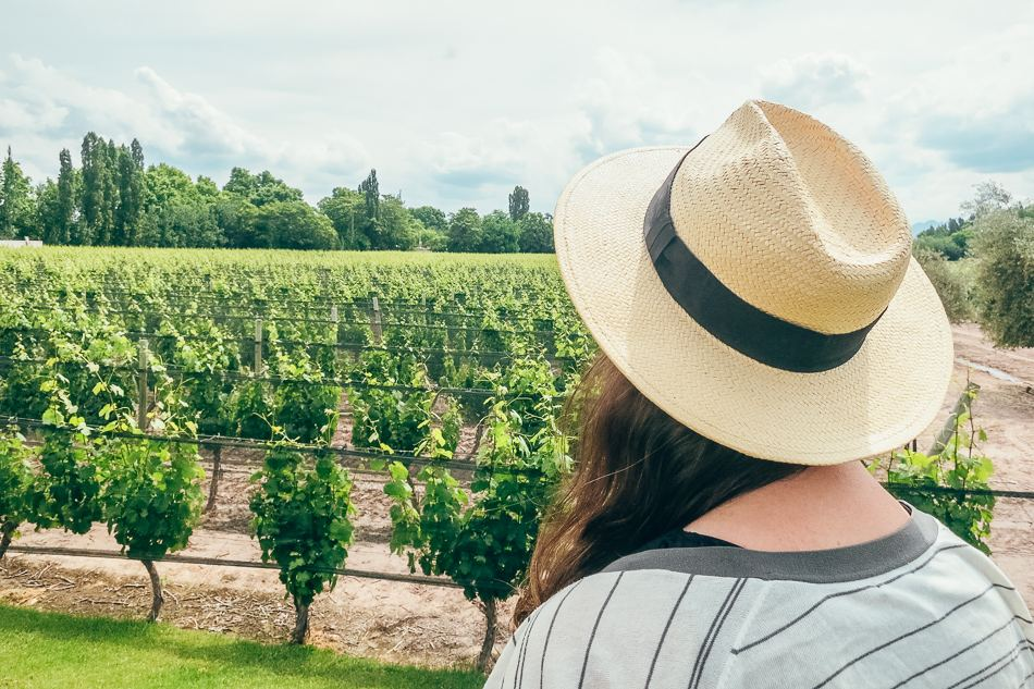 Best Wine Tours with Mendoza Wine Camp