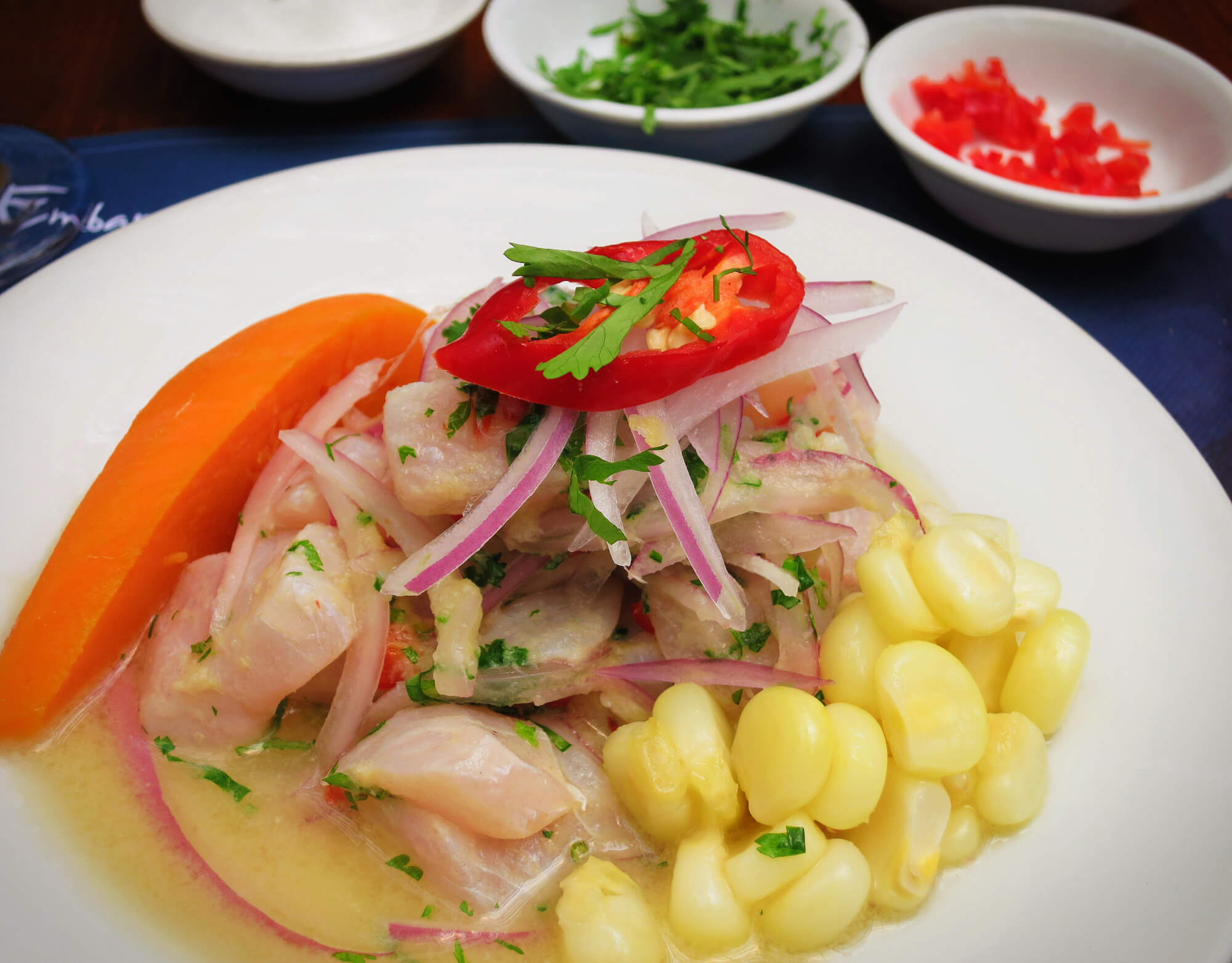 Peruvian Ceviche made in a cooking class with Lima Gourmet in Lima, Peru!