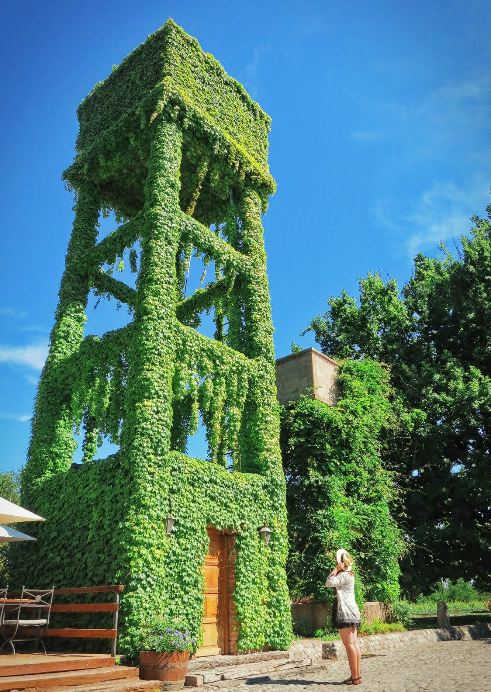 An ivy-covered water tower at a winery in Mendoza's Lujan de Cuyo wine valley, part of our wine tasting tour with Mendoza Wine Camp in Argentina!