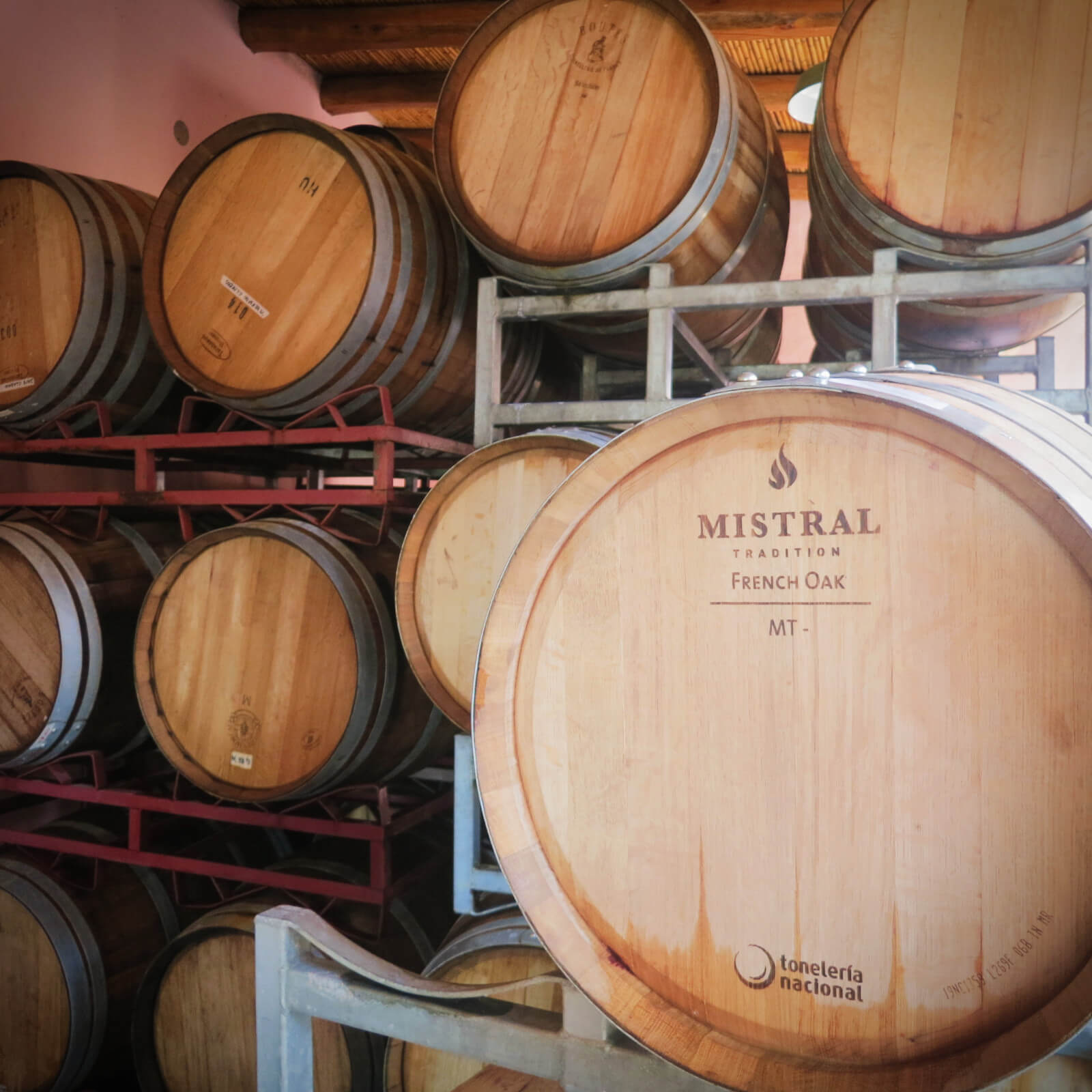 Wine Barrels stacked high at Dante Robino Winery, one of the 4 wineries we visited with Mendoza Wine Camp in Mendoza, Argentina!