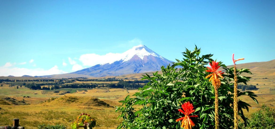 Cotopaxi, Ecuador as seen from The Secret Garden Hostel