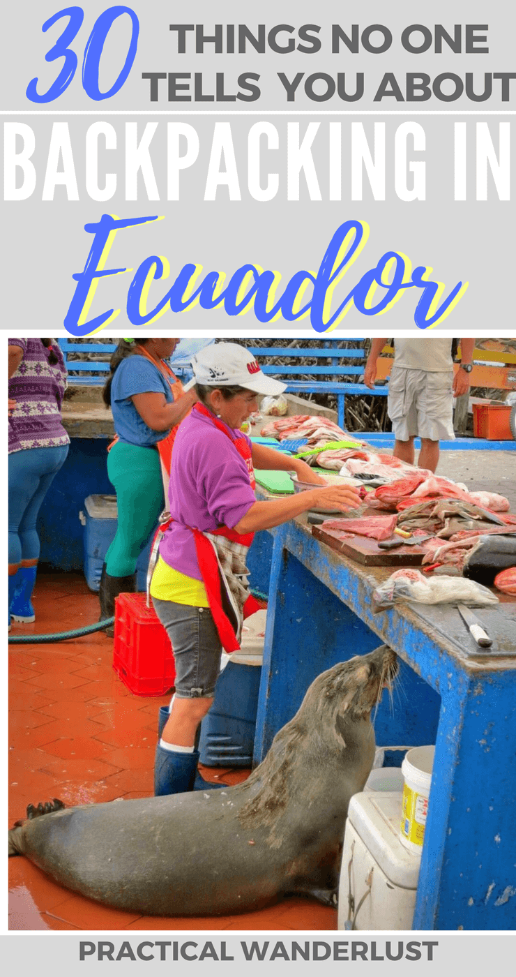 Before we spent a month backpacking in Ecuador, nobody told us that the sea lions in the Galapagos Islands act like dogs begging for table scraps! Here's 30 random things that nobody told us before we went backpacking in Ecuador.