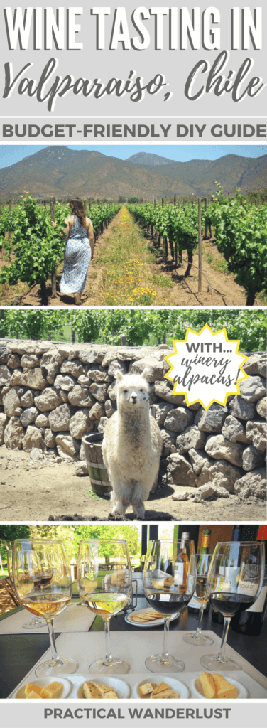 Valparaiso, Chile sits next to the Casablanca Wine Region. Although most people assume you need a tour to enjoy wine tasting in Valparaiso, you don't! It's totally budget-friendly and easy to craft your very own day of wine tasting in Valparaiso. Read our how-to guide for details!