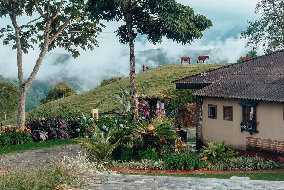 Hostels in Salento, Colombia