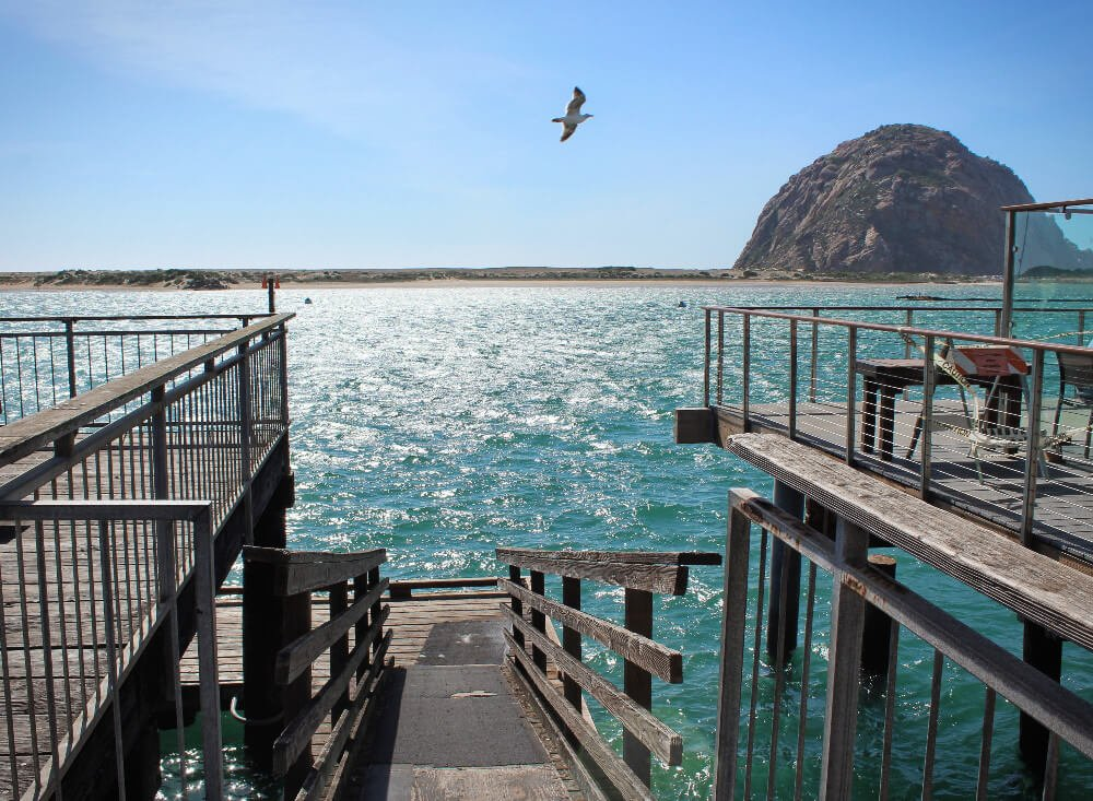 Morro Bay, California is home to the extremely iconic Morro Rock. It's also home to tons of adorable marine critters like otters and harbor seals, and is probably one of the best places to watch the sunset in the world.