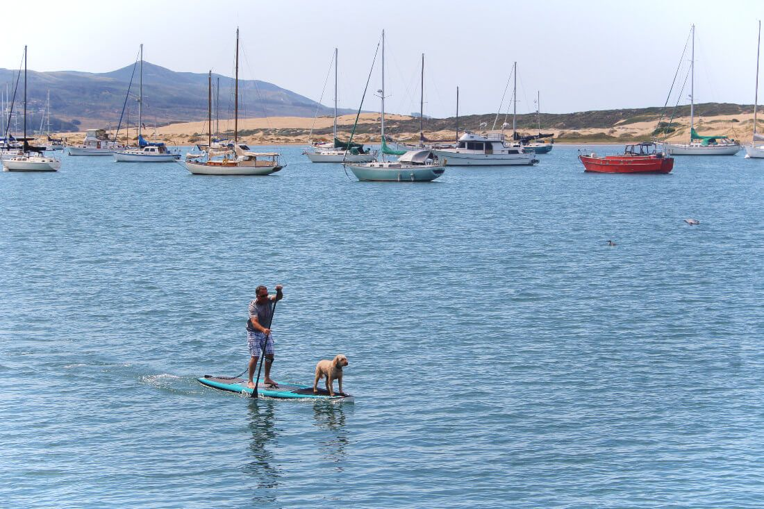 Stand up paddleboarding in the harbor at Morro Bay, California.