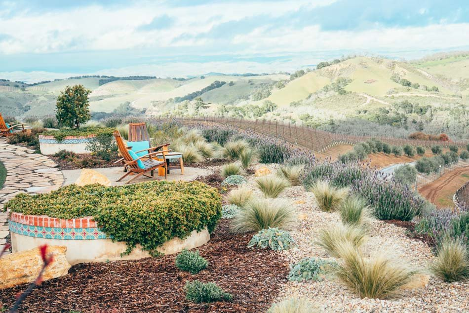 Patio view of rolling hills at Dauo Vineyards, one of the most scenic wineries in Paso Robles.