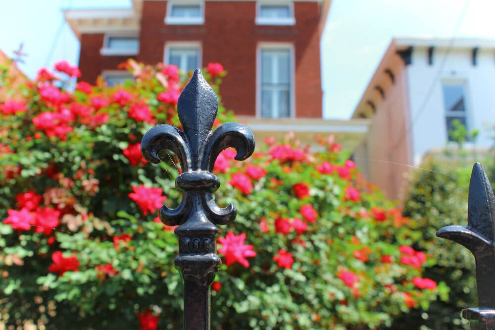 You'll see Fleur de Lis all over Louisville, Kentucky. It's sort of the unofficial Symbol of Louisville, and Louisville natives LOVE it! The origin story comes from Louis XVI of France, the namesake for Louisville.
