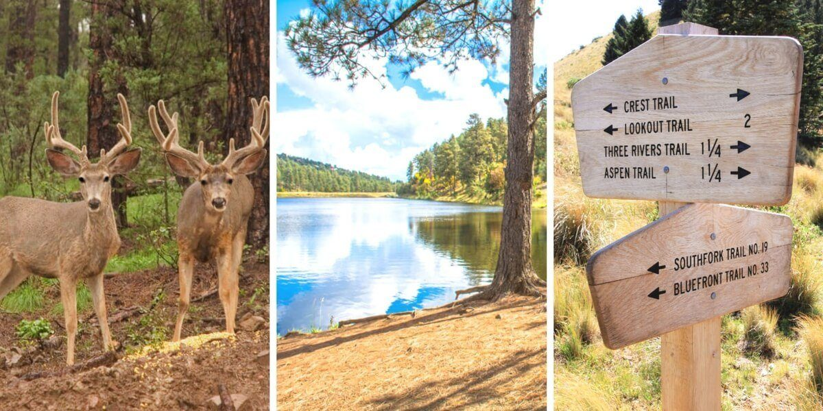 There are so many amazing, adventurous things to do in Ruidoso, New Mexico. This USA travel destination is a hidden gem and a paradise for outdoor lovers!