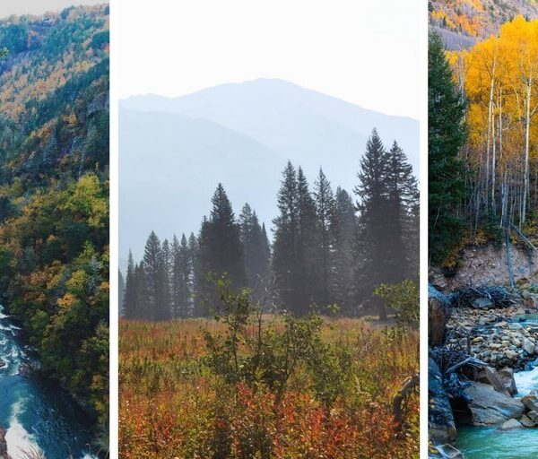 The 8 best day hikes near Denver, Colorado that you've never heard of. Avoid crowds and take in the mountains on these incredible hikes in Colorado!