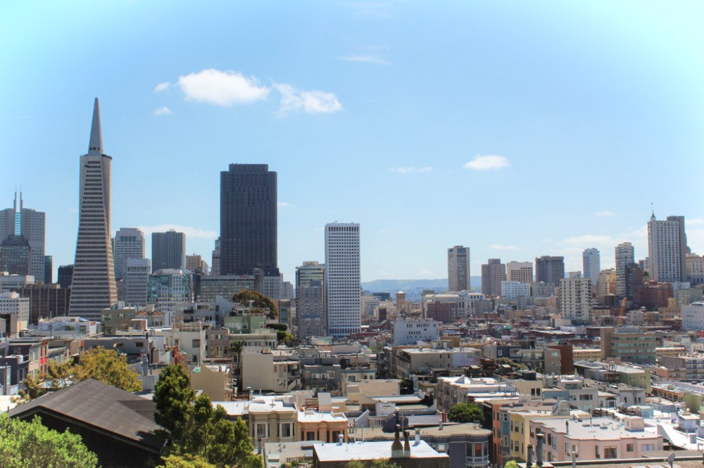Beautiful San Francisco! This is another view from our self-guided San Francisco walking tour, up by Coit Tower!