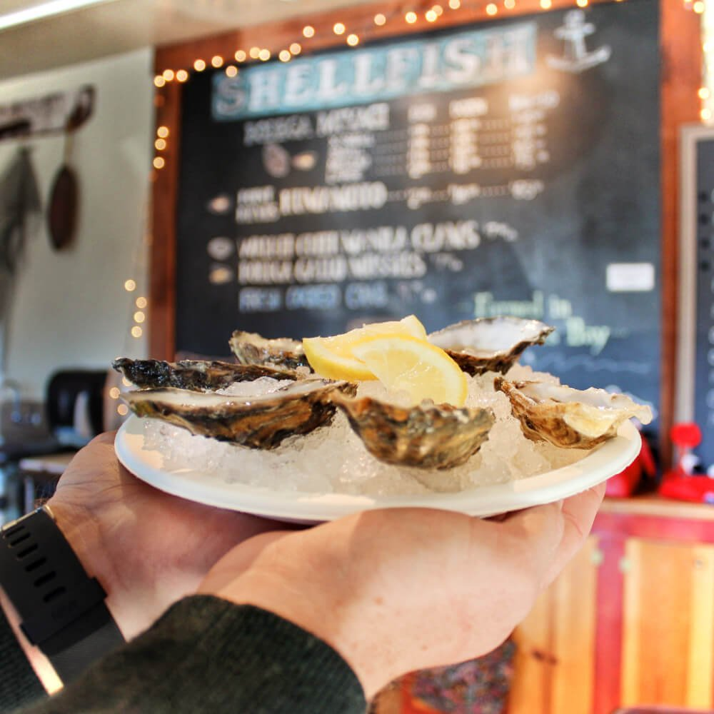 Delicious fresh oysters at Bodega Bay Oyster company in Northern California.