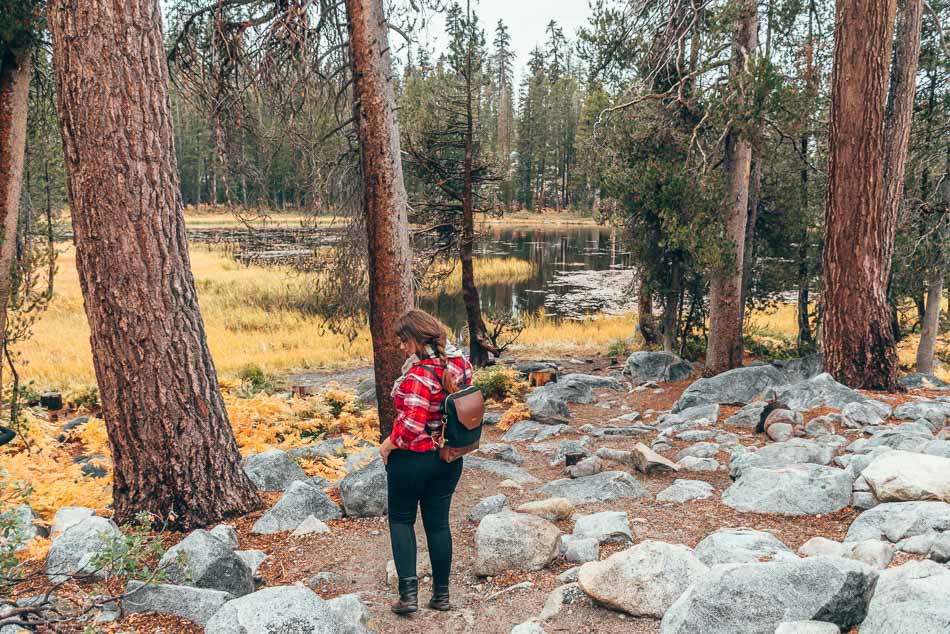 Exploring Yosemite National Park in my FAVORITE leggings for travel (THEY HAVE POCKETS!) Psst: You can snag the gorgeous leather backpack for 15% off through 12/31/18 using the code PRACTICALWANDERLUST.