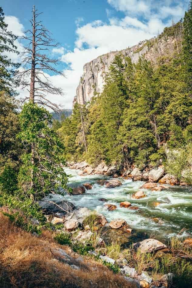 Lush green granite canyon with rushing Merced River flowing through - Yosemite National Park