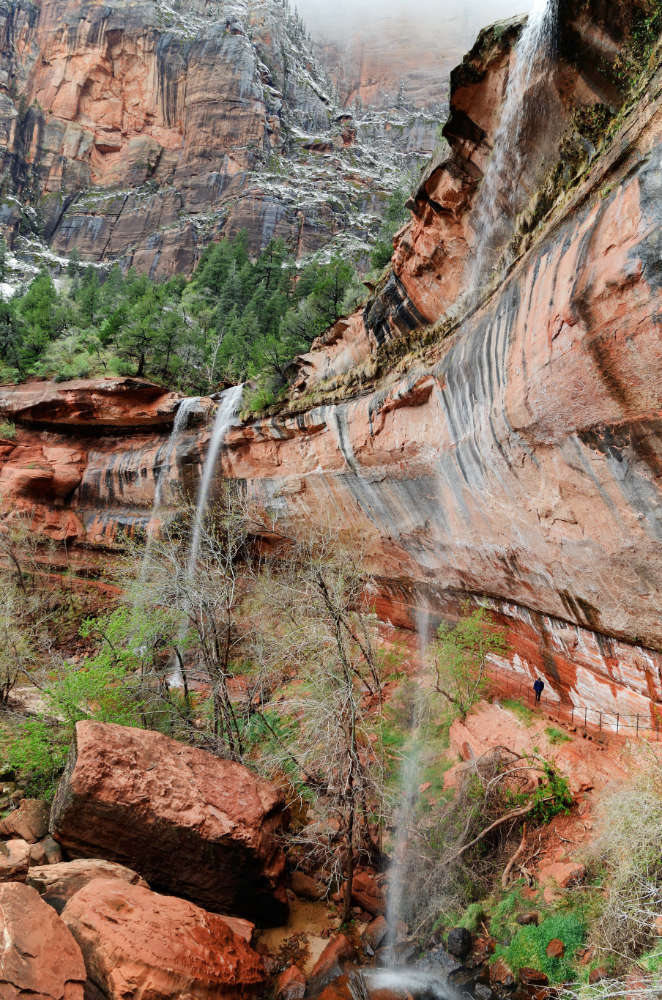 The Emerald Pools, one of the easiest Zion day hikes.