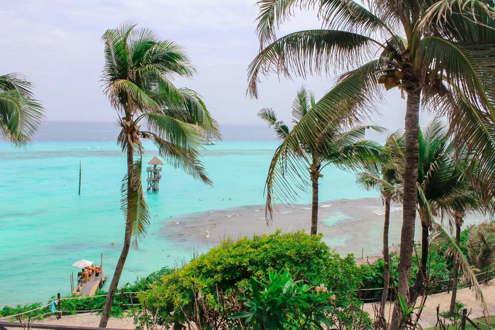 Palm trees and bright blue water in Isla Mujeres, Mexico.