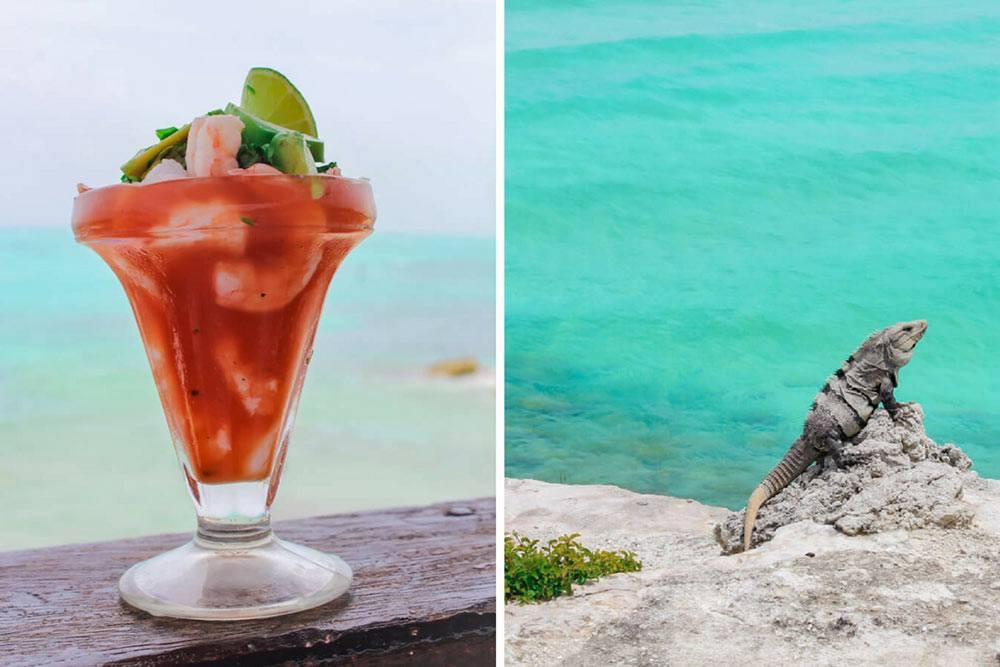 Isla Mujeres Shrimp Cocktail and Iguana Mexico (1)