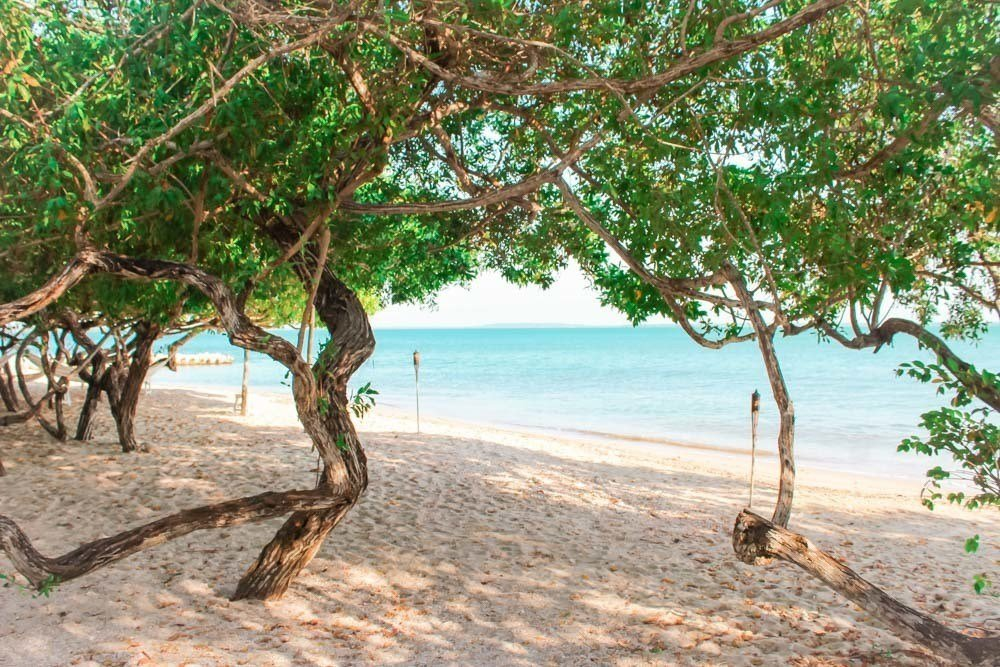 The best thing to do on Isla Baru is to hit the beac,h, obviously. This quiet private beach can be found just past the mangroves at Playa Manglares, the best hotel on Isla Baru, Cartagena, Colombia!