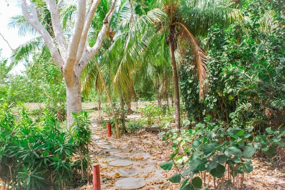 The path from the bungalow to the beach at Playa Manglares on Isla Baru, Cartagena, Colombia!