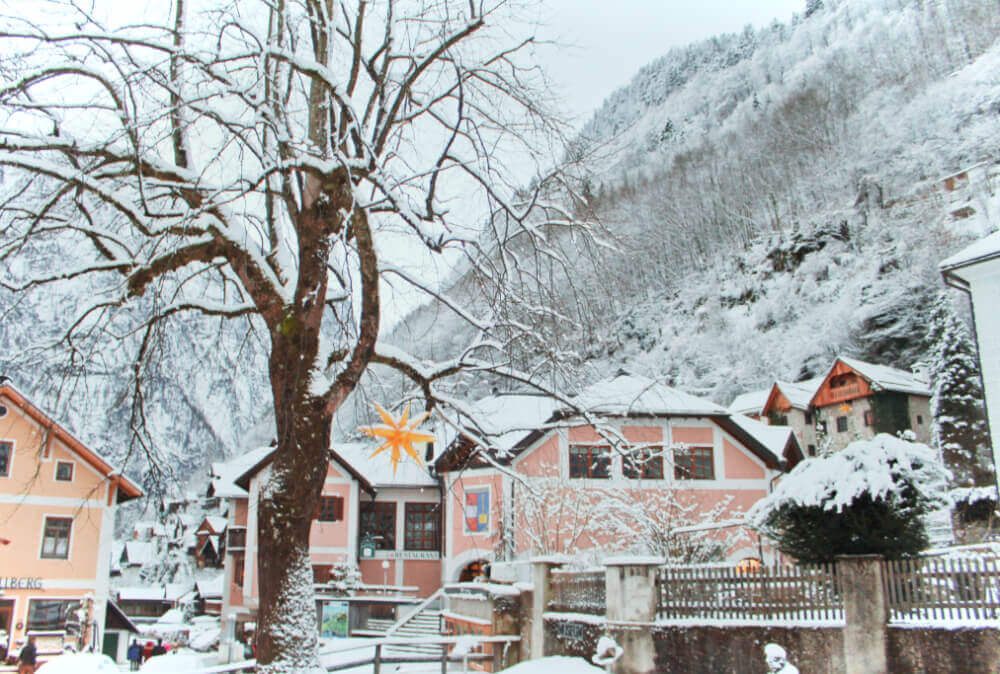 Pink buildings and a star hanging from a tree in snowy Hallstatt, Austria in the winter.
