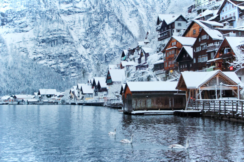 Hallstatt, Austria in the snow in the winter, with swans on the lake.