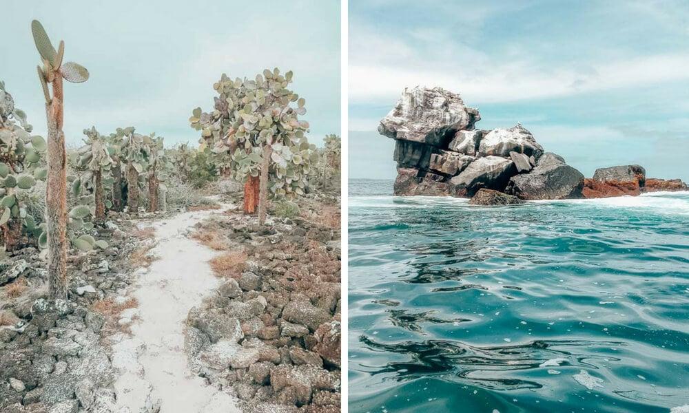 A sandy path and bird-covered rock in the Galapagos Islands, Ecuador.