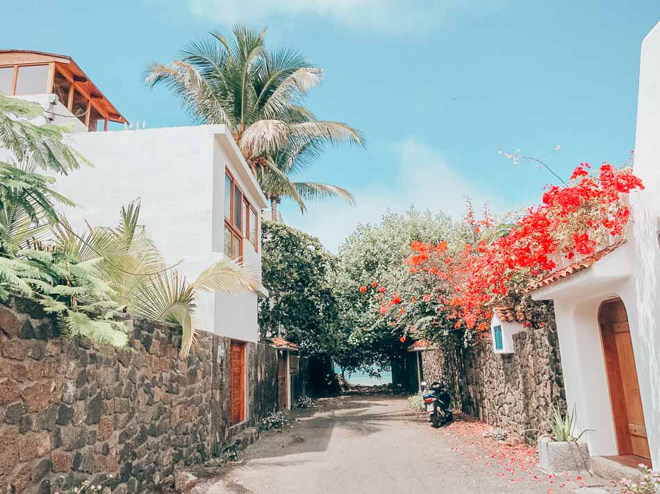 A flower-laden alley in Puerto Ayora on the Galapagos Islands in Ecuador.