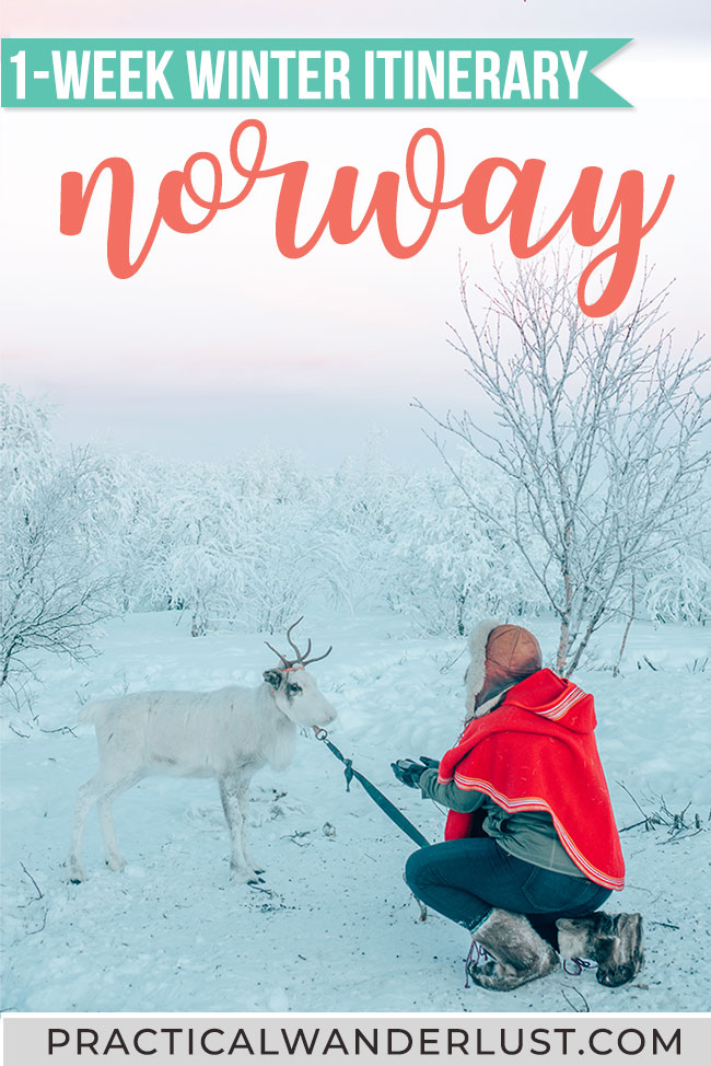 Northern Lights, reindeer, dogsledding, fjords, arctic tundra ... this 7 day Norway winter itinerary has it all! Here's the perfect Norway travel itinerary for winter. #Norway #Winter #Travel
